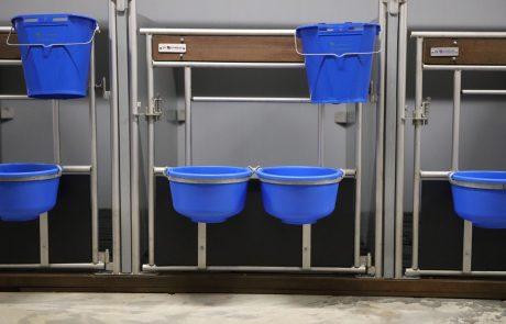 Deurtjes calf care system kalverenopfok huisvesting