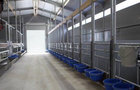Winnerfarm Maes Eksel Calf Care System g van beek kalverenopvang